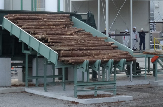 原木から発電までのプロセスをパッケージ化
