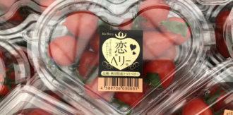 秋田県でハウス農業進出 ミニトマト「恋ベリー」を栽培 ~地元の秋田農販と協業 循環型農業を推進~